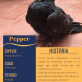 FILE_ Pepper
