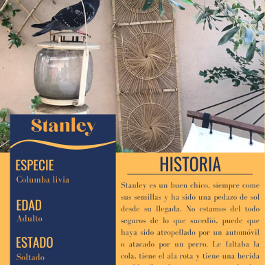 FILE_ Stanley